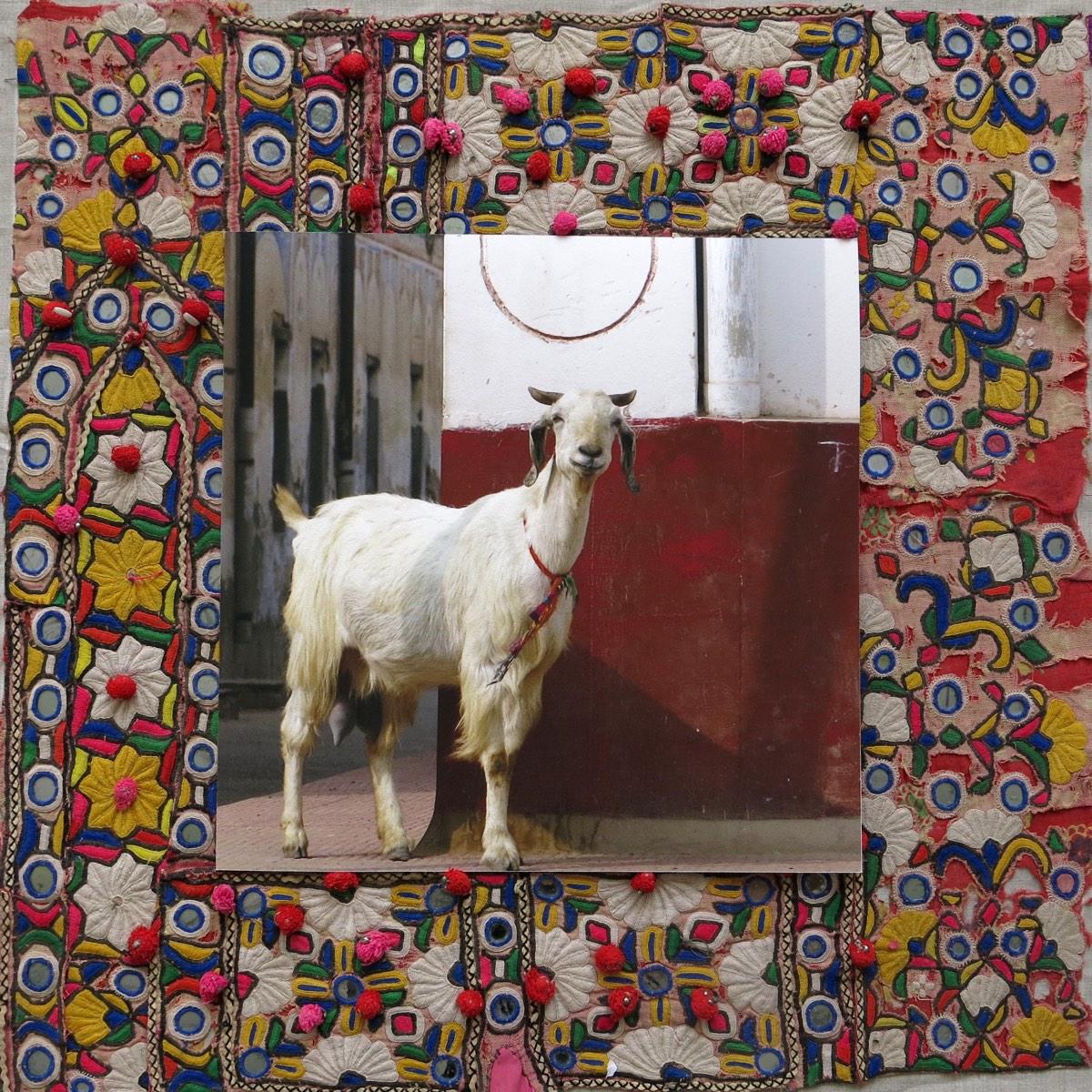 'Portret geit' 60x60cm Gemengde techniek: eigen beeld op handgeborduurde oude Indiase textiel. (sold)