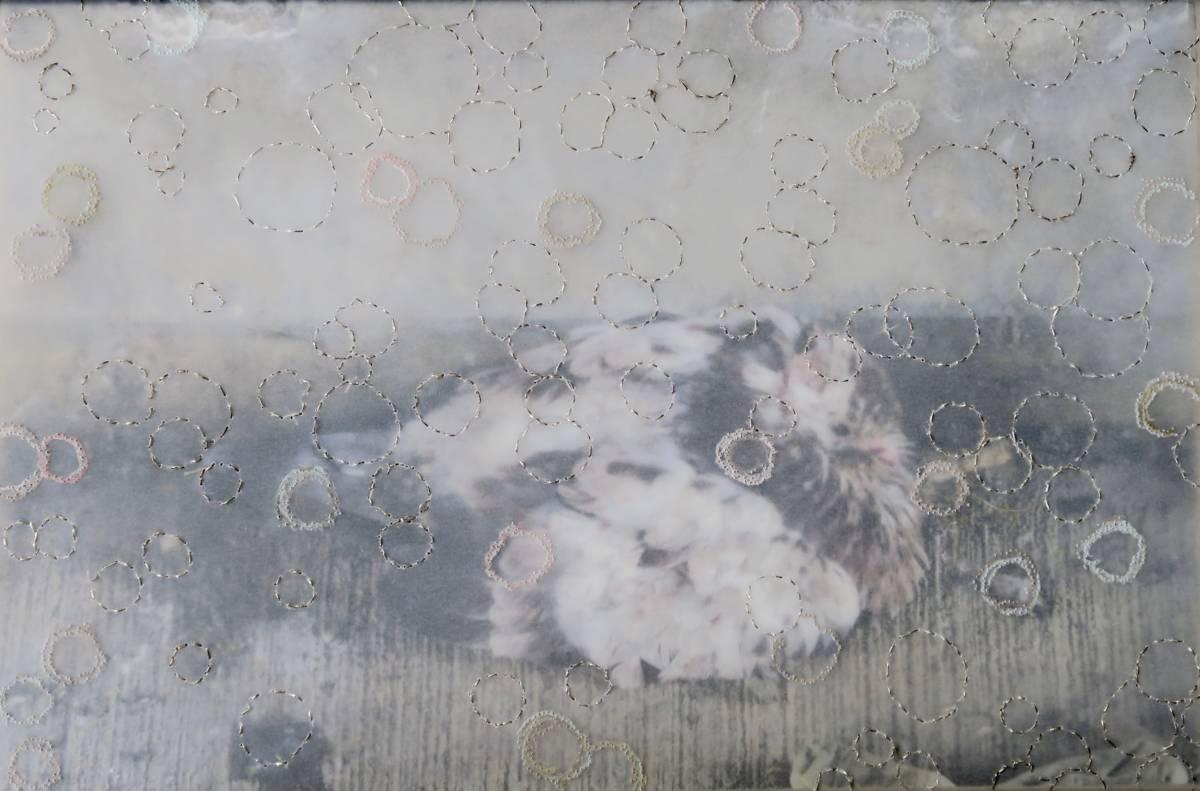 Serie: Skindeep nr. 12 'Duif in Brooklyn' 25x35cm Gemengde techniek: eigen beeld geperforeerd kalkpapier pastel 19e eeuw zilverdraad.